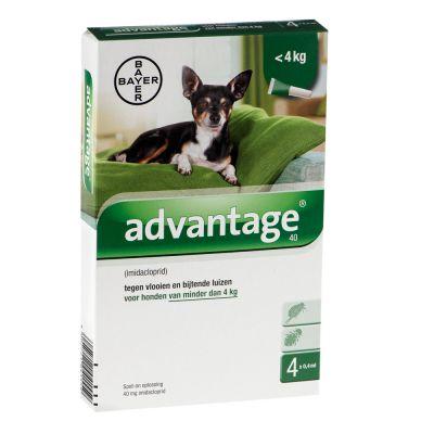 Advantage ongediertebestrijding voor honden