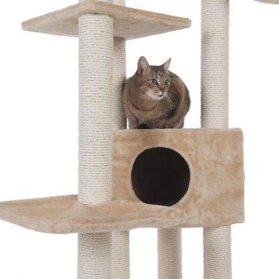 Atlas-raapimispuu kissoille
