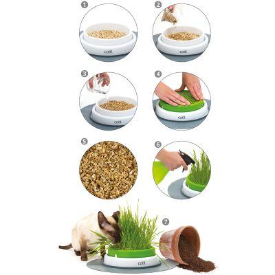 catit senses 2 0 grass planter great deals at. Black Bedroom Furniture Sets. Home Design Ideas