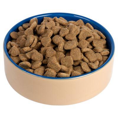 Chappie Puppy Food Uk