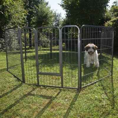 Enclos pour chien prix avantageux chez zooplus enclos for Prix d une poule rousse