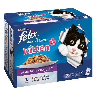 Simpsons Premium Wet Cat Food