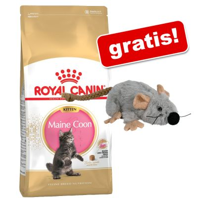 royal canin katzenfutter trocken g nstig bei zooplus 4 kg royal canin kitten trixie. Black Bedroom Furniture Sets. Home Design Ideas