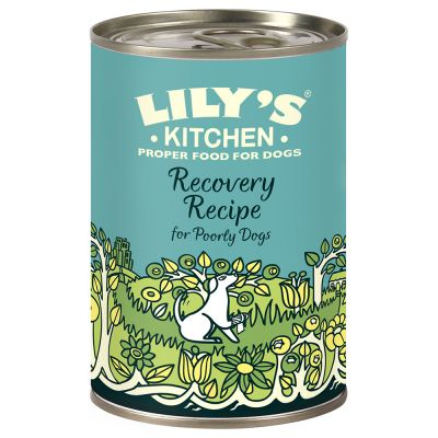Lily's Kitchen Recovery Recipe for Dogs