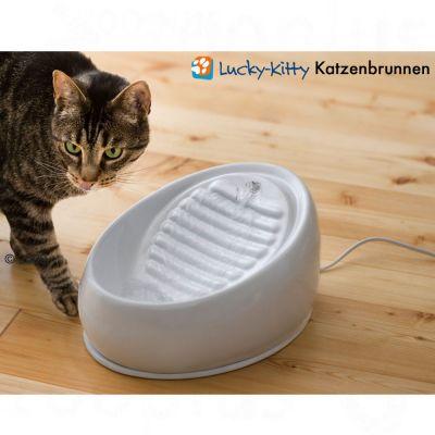 Lucky Kitty, keraaminen