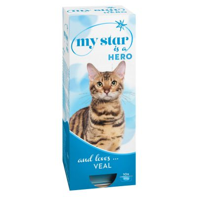 Cat wet food