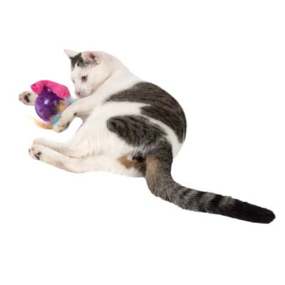 Pelota de juguete Categories® Zany Cat para gatos