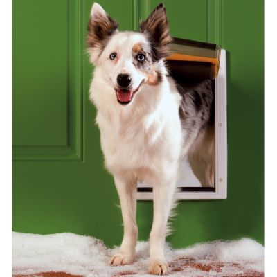 porte pour conditions climatiques extr mes porte pour chien zooplus. Black Bedroom Furniture Sets. Home Design Ideas