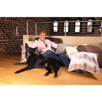 petsafe spray anti bell halsband g nstig bei zooplus. Black Bedroom Furniture Sets. Home Design Ideas