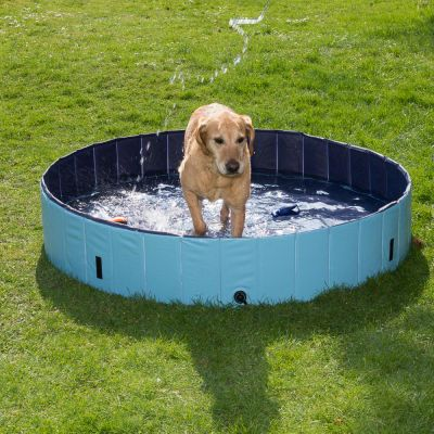 dog pool keep cool piscine pour chien zooplus. Black Bedroom Furniture Sets. Home Design Ideas