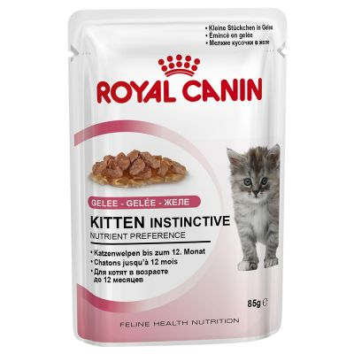 Royal Canin Kitten Instinctive w galarecie