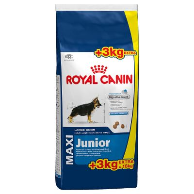 royal canin maxi junior. Black Bedroom Furniture Sets. Home Design Ideas