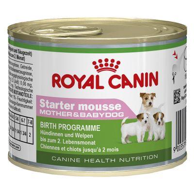 royal canin starter mousse mother babydog free p p 29. Black Bedroom Furniture Sets. Home Design Ideas