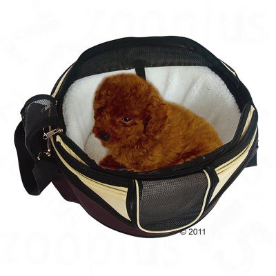 Sac de transport rigide Sandy pour chien et chat
