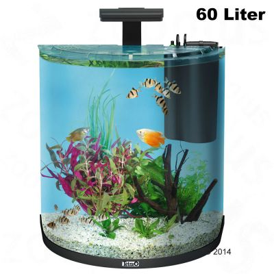 tetra aquaart explorer line halfmoon aquarium complete set. Black Bedroom Furniture Sets. Home Design Ideas