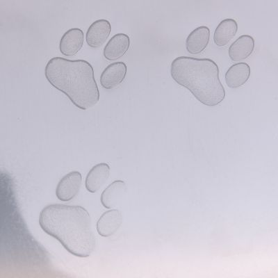 Toilette per gatti Cabrio