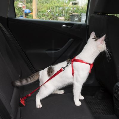 Trixie Cat Car Harness Great Deals At Zooplus Ie