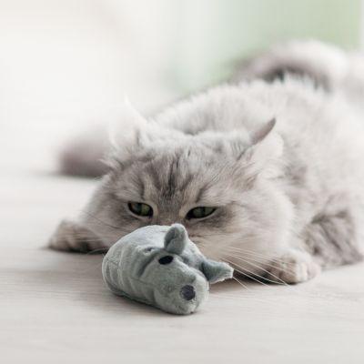 Zabawka dla kota Aumüller Baldi Mouse