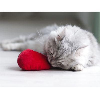 zoolove corazón con valeriana para gatos